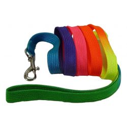 Webbing Lead for Small Dogs, Puppies and Cats by MoggyorMutt