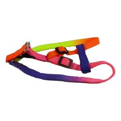 Webbing Harness for Small Dogs, Puppies and Cats by MoggyorMutt