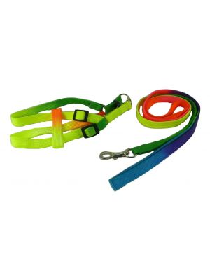 Harness & Lead for Small Dogs, Puppies and Cats Model 2 by MoggyorMutt