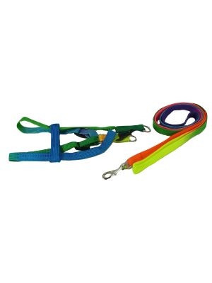 Harness & Lead for Small Dogs, Puppies and Cats Model 5 by MoggyorMutt