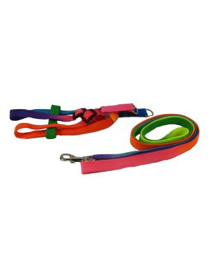 Harness & Lead for Small Dogs, Puppies and Cats Model 6 by MoggyorMutt